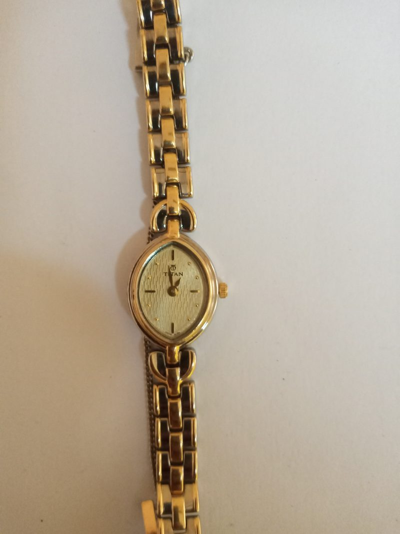 Titan Gold and Stainless Steel Women